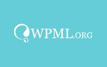 Store - WooCommerce WordPress Theme - 10